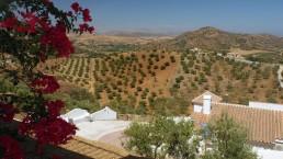 Appartementen Zuid-Spanje